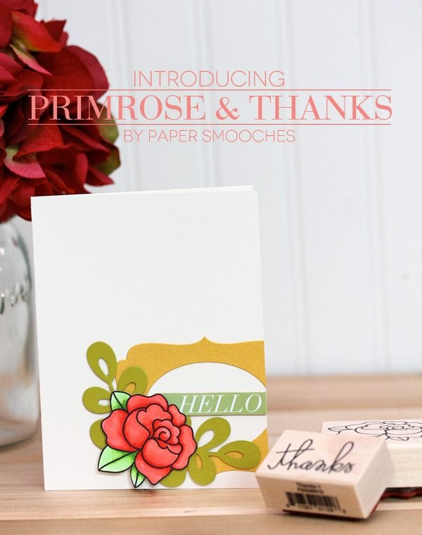 Primrose & Thanks by Paper Smooches