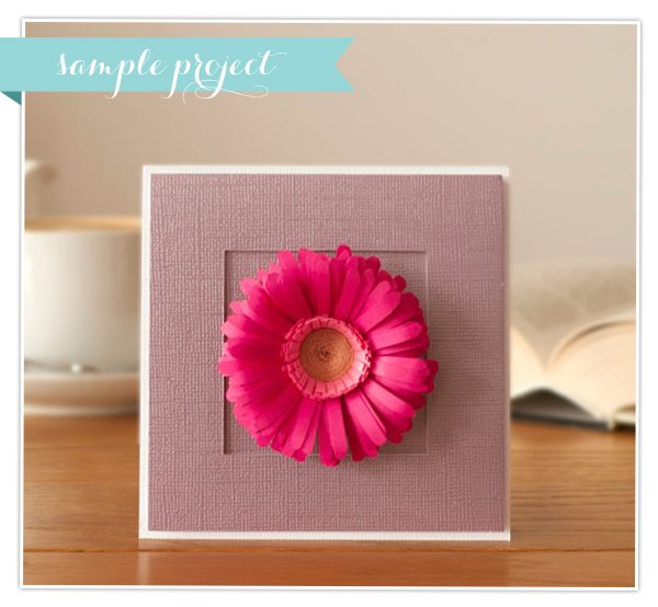 fringed-flower-card