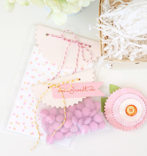 Pinked Circle Die Gift Set | Damask Love
