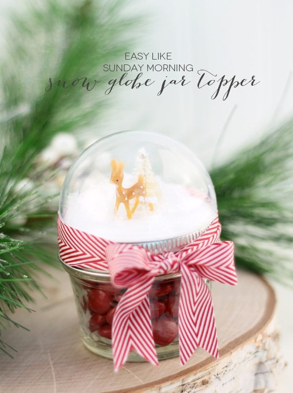 Snow Globe Mason Jar Topper | Damask Love